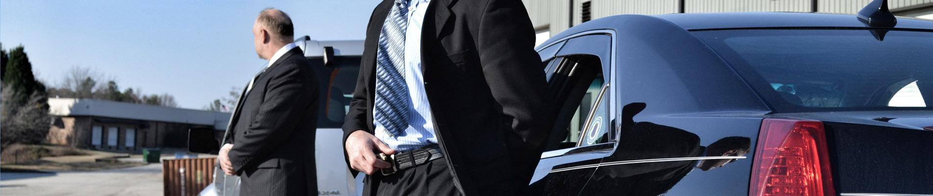 Bodyguard, VIP Security, Executive Protection, Executive ...